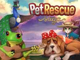 pet-rescue-new-level