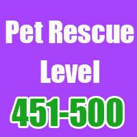 pet-rescue-451