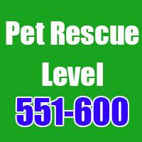 pet-rescue-501
