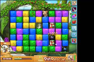 Pet Rescue level 507