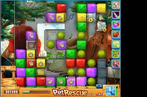 Pet Rescue level 535